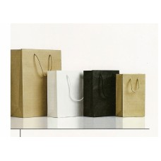 Luxury matte paper bag with cord